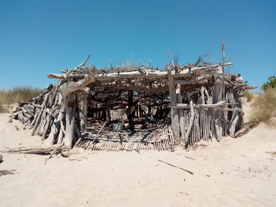 En Camargue du 6 au 13 Juillet Image15