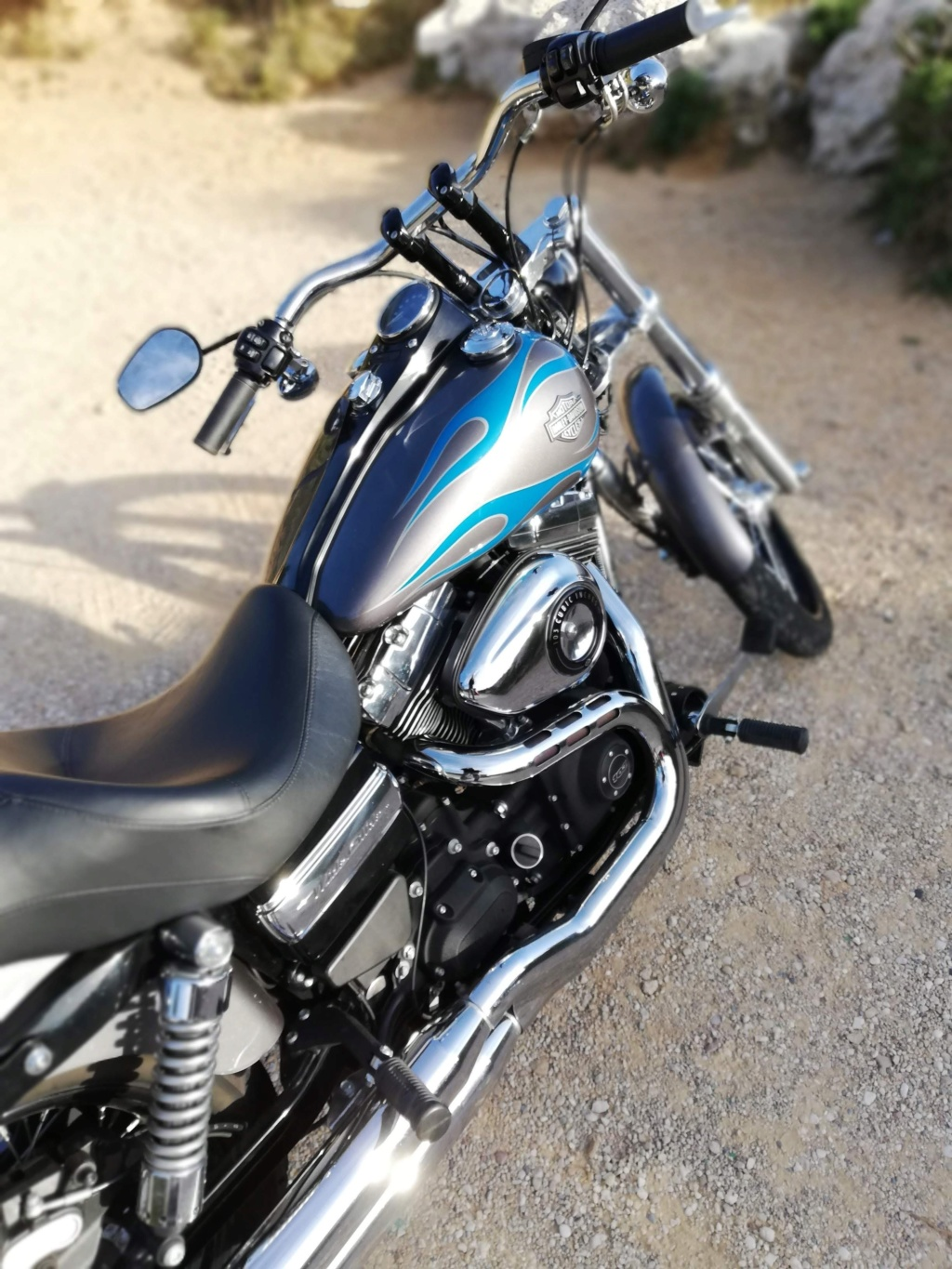 DYNA WIDE GLIDE, combien sommes-nous sur Passion-Harley - Page 43 Img_2062