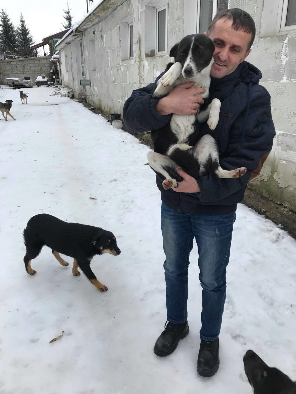 Dixie - femelle - chez Andreea à Târgu Frumos - réservée adoption (67) 48368810