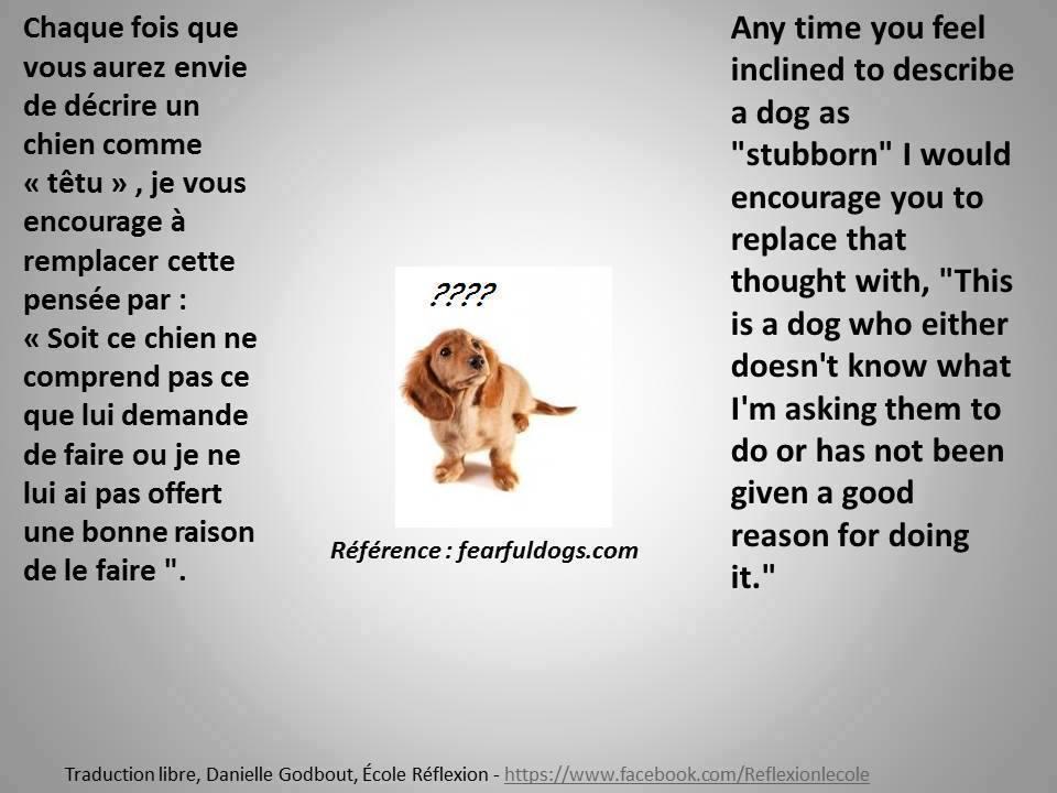 Veille documentaire : éthologie, éducation positive et comportement du chien Educ_p12