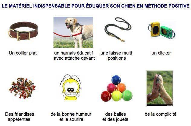 Veille documentaire : éthologie, éducation positive et comportement du chien Matzor10