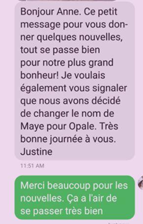 Opale (ex Maye) - femelle - en FA en Alsace (67) - réservée adoption (88) Maye_210