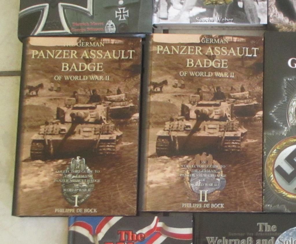 Panzer bronze  Pab10