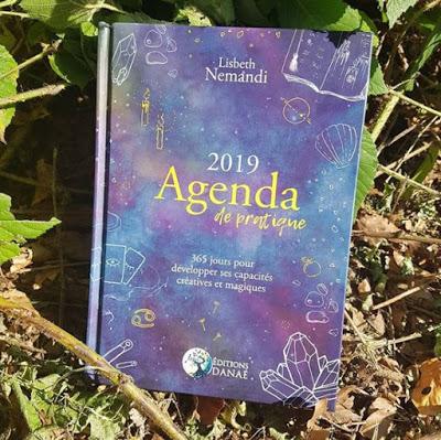 Agenda de pratique 2019 - Lisbeth Nemandi Couv10