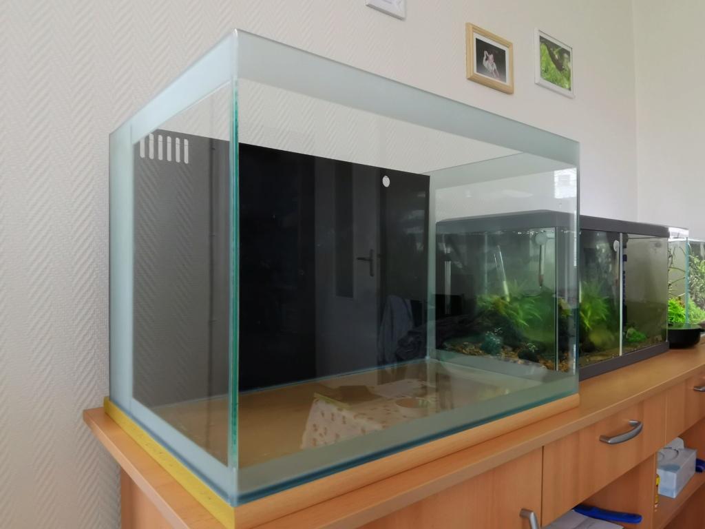 Mon aquarium récifal - je me lance Img_2013