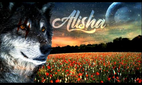 The tormented storm ft Alisha Ayati10