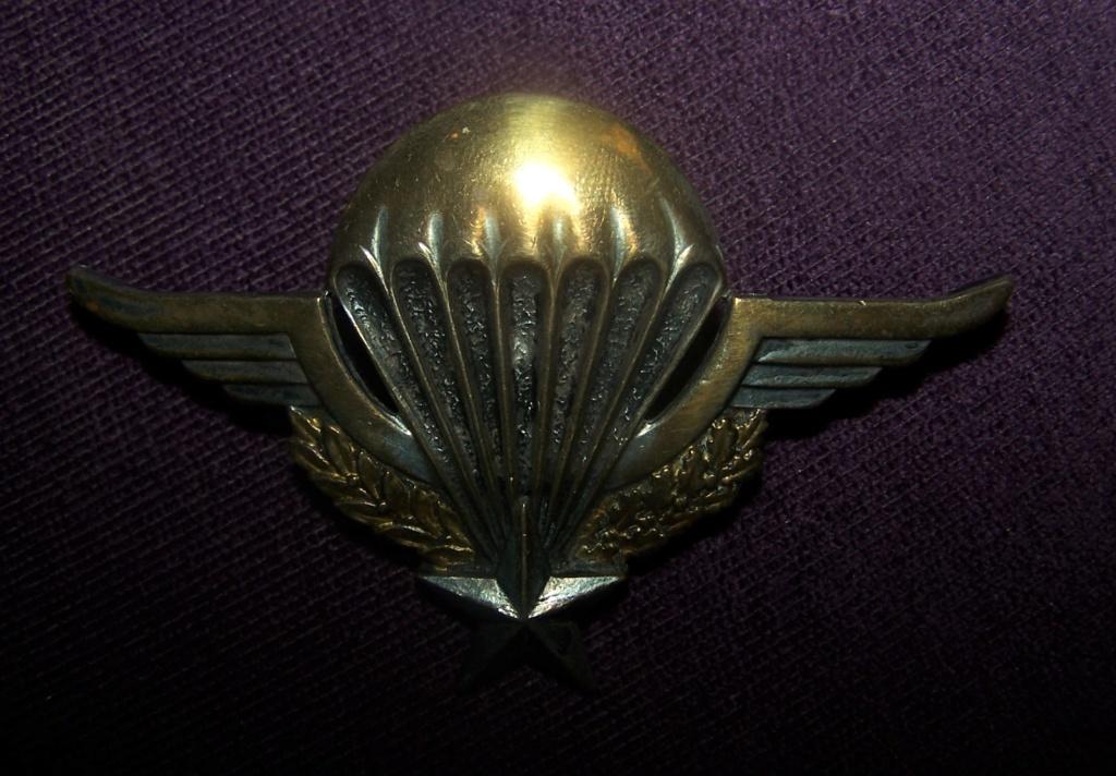 Brevet PARA ailes relevées... 000_1646