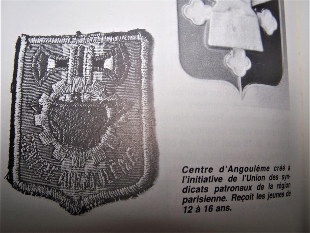 Insigne tissu à identifier . Période Etat Français ? 000_2367