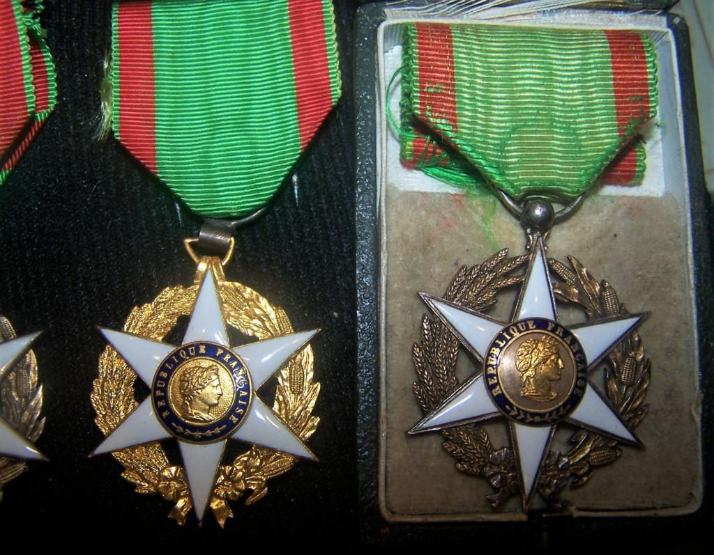 Différencier médaille mérite agricole  000_2383