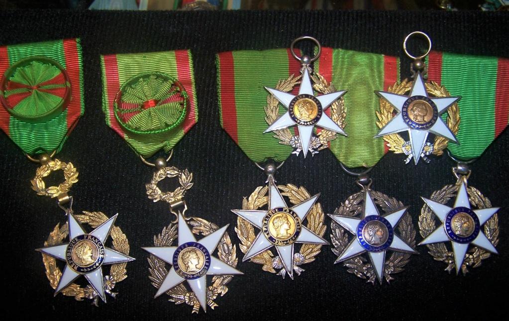 Différencier médaille mérite agricole  000_2384