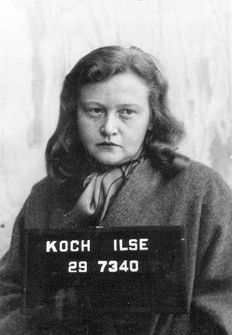 La chienne de Buchenwald Ilse_k11