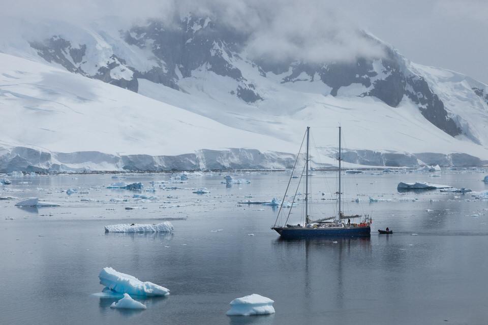 Antarctique - Page 4 110