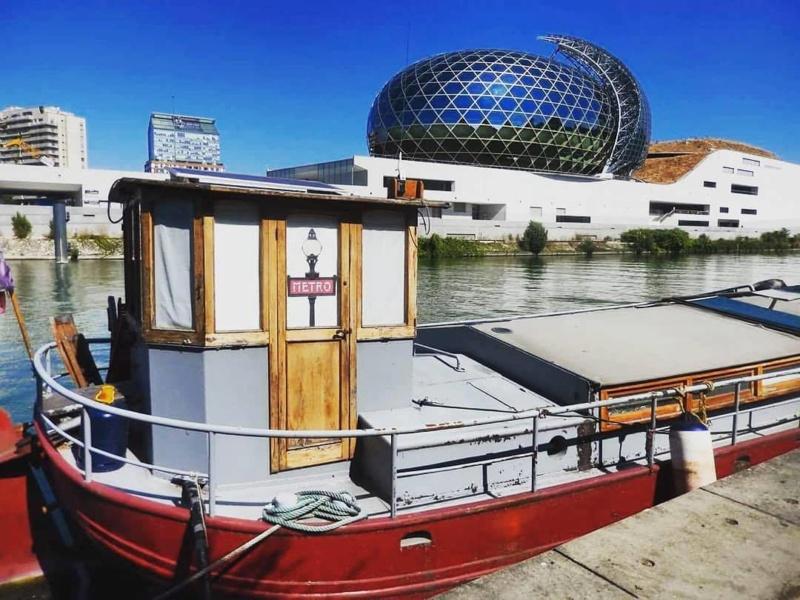La Seine Musicale de l'île Seguin 39775310