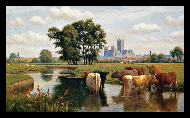 Canterbury 200810