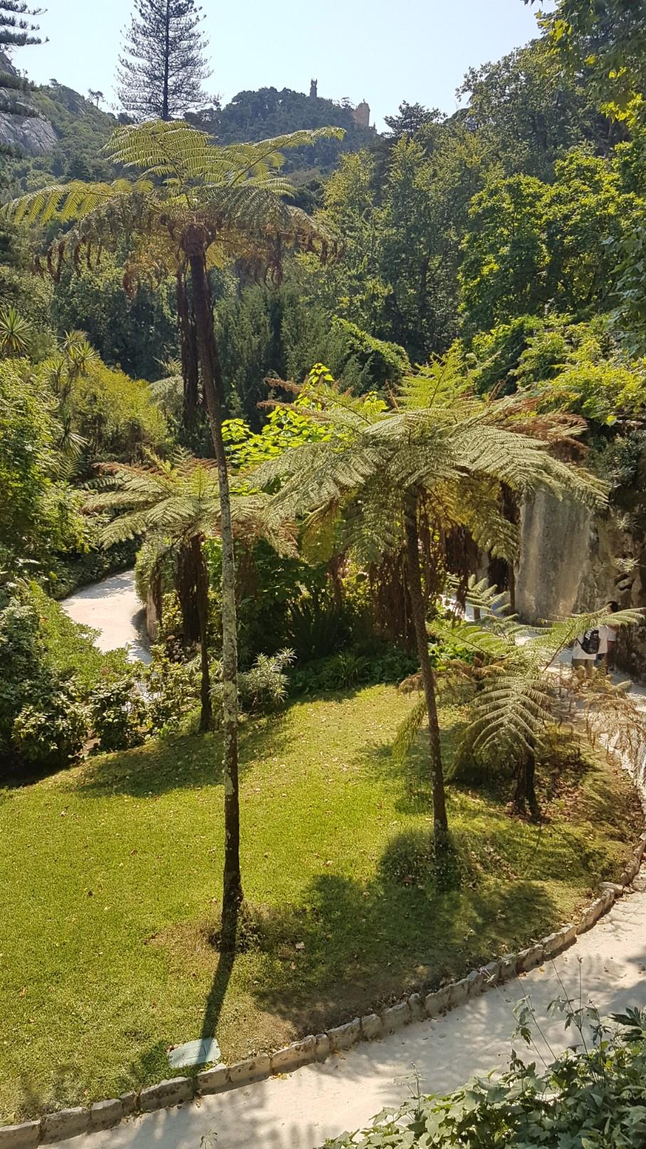 (Portugal) Jardins et palais da Regaleira - Sintra 20180271