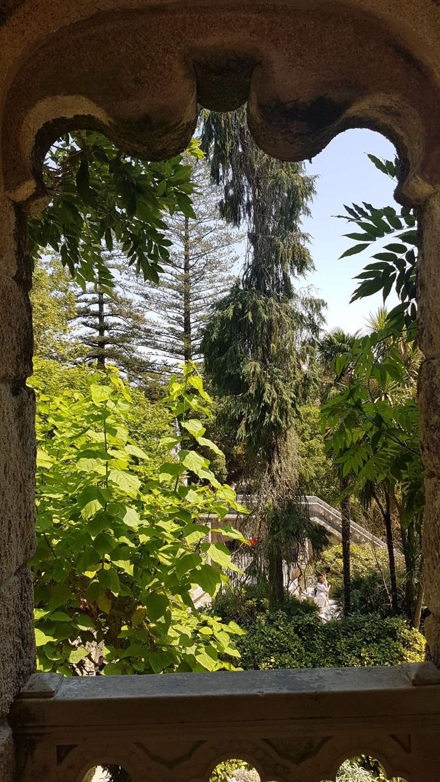 (Portugal) Jardins et palais da Regaleira - Sintra 20180274