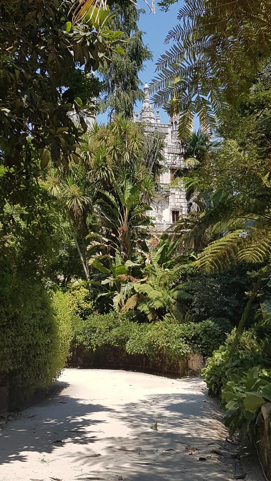 (Portugal) Jardins et palais da Regaleira - Sintra 20180276