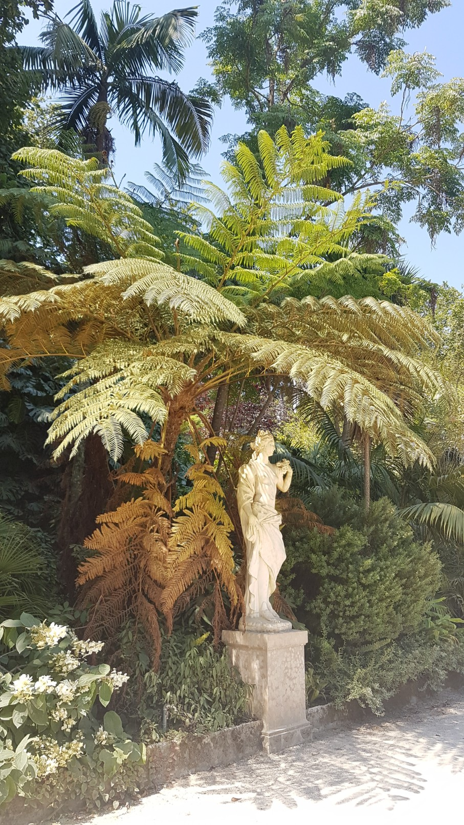 (Portugal) Jardins et palais da Regaleira - Sintra 20180281