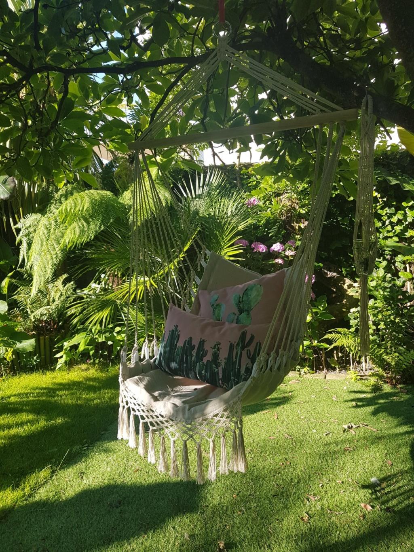Rémi - Mon (tout) petit jardin en mode tropical - Page 8 20180654