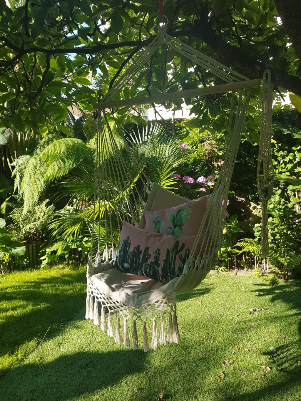 Mon (tout) petit jardin en mode tropical - Page 8 20180654