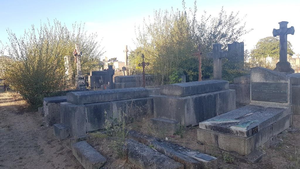 Au pied de mon arbre ... - Les cimetières pleins de vie - Page 2 20181017