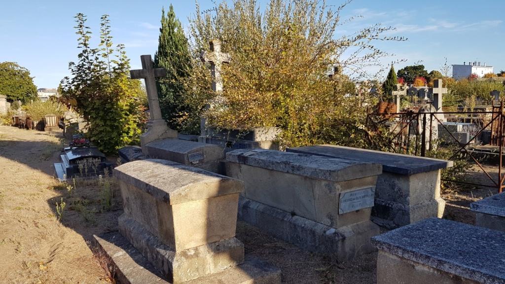 Au pied de mon arbre ... - Les cimetières pleins de vie - Page 2 20181018