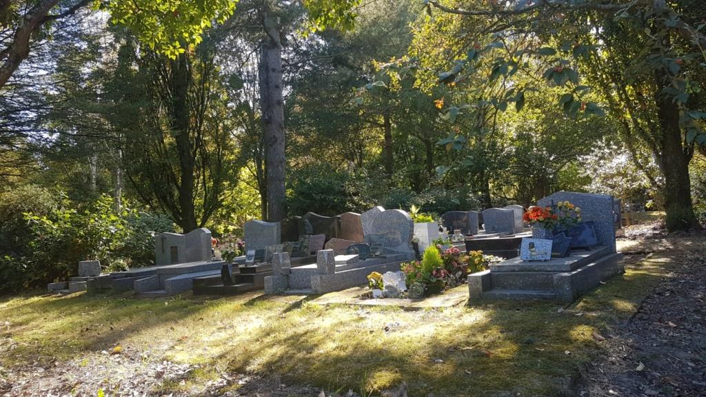 Au pied de mon arbre ... - Les cimetières pleins de vie - Page 2 20181032