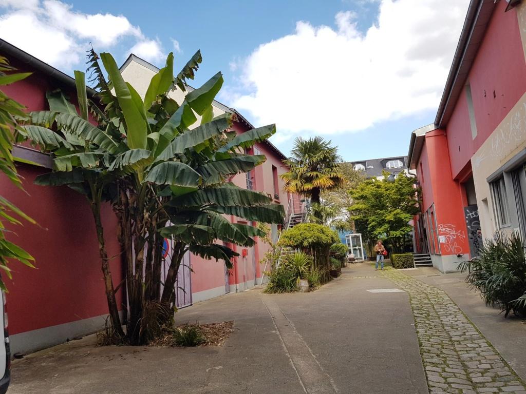 (44) On dirait le Sud - Quartier Champs de Mars - Madeleine (Nantes) 20190514