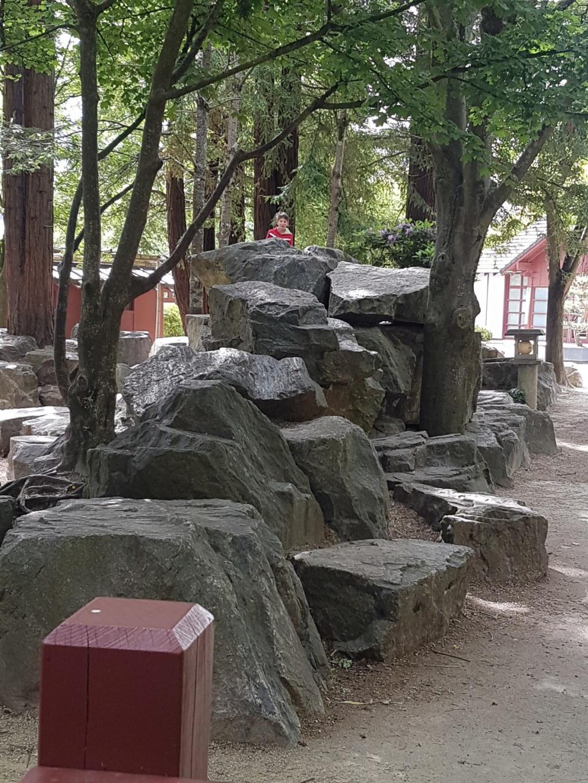 (44) Jardin japonais de l'île de Versailles - Nantes  20190664