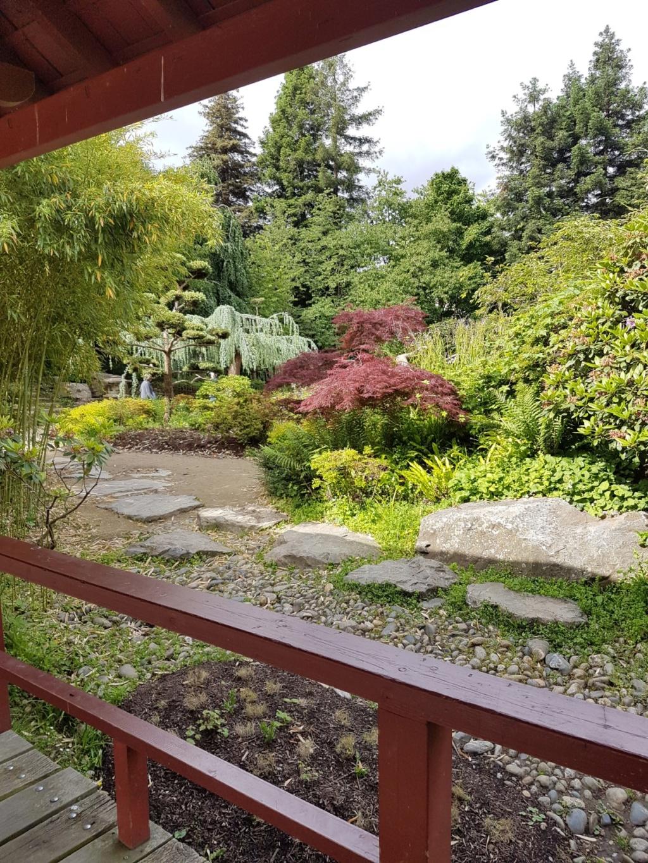 (44) Jardin japonais de l'île de Versailles - Nantes  20190666
