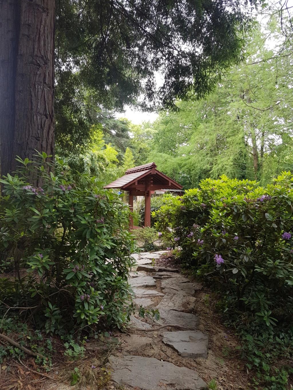 (44) Jardin japonais de l'île de Versailles - Nantes  20190668
