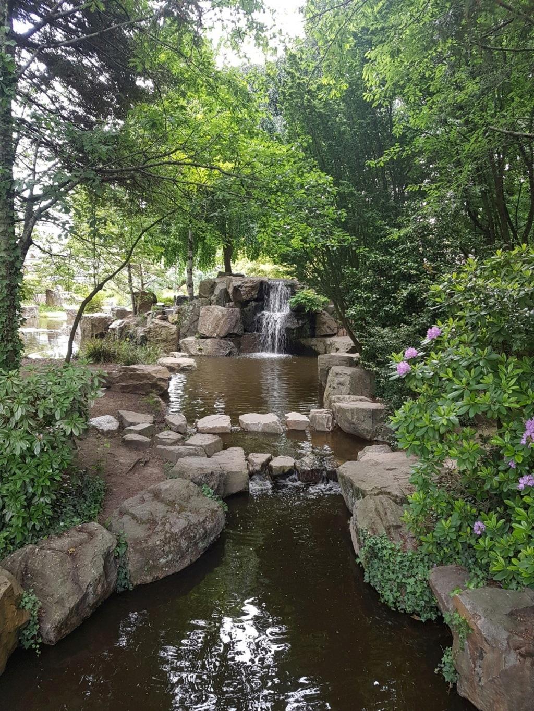 (44) Jardin japonais de l'île de Versailles - Nantes  20190669