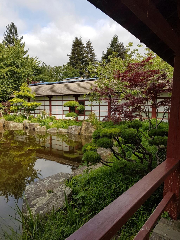 (44) Jardin japonais de l'île de Versailles - Nantes  20190670