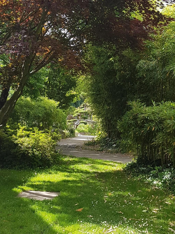 (44) Jardin japonais de l'île de Versailles - Nantes  20190674