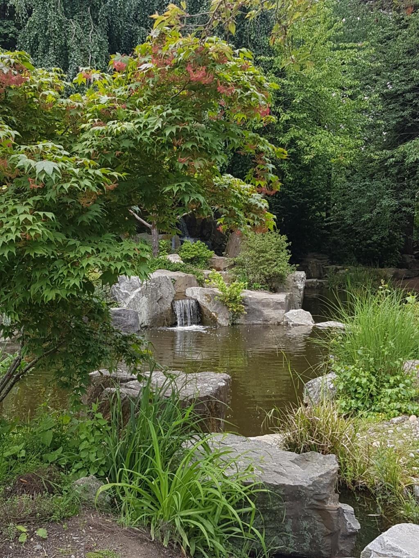 (44) Jardin japonais de l'île de Versailles - Nantes  20190676