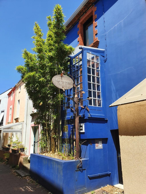 Village jardin exotique de Trentemoult (44) 20190752