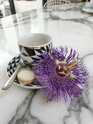 Passiflora 'Fata Confetto' 20191155