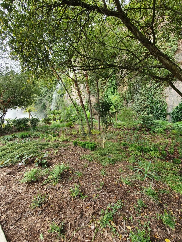 (44) Jardin Extraordinaire - Carrière Misery - Nantes 20191170