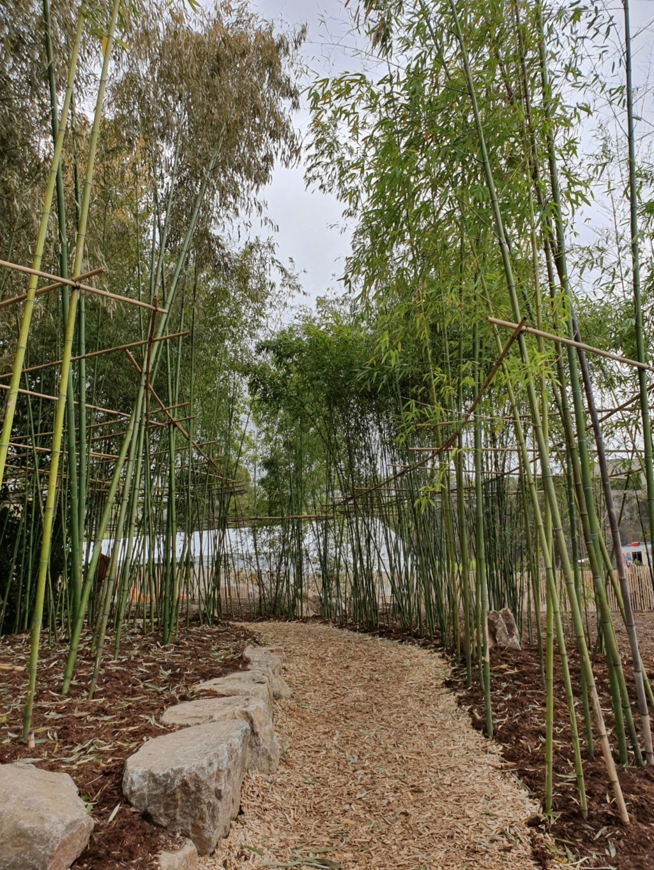 (44) Jardin Extraordinaire - Carrière Misery - Nantes 20191172