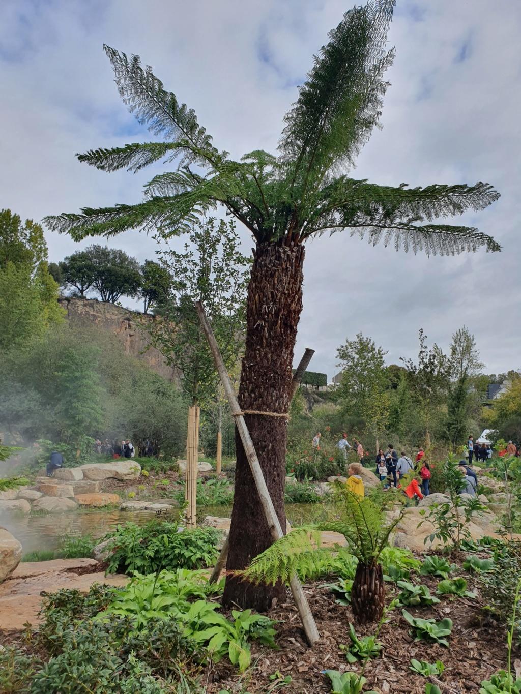 (44) Jardin Extraordinaire - Carrière Misery - Nantes - Page 2 20191180