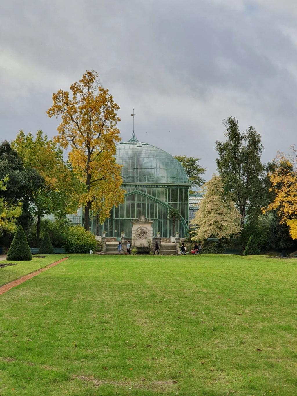 (75) Jardin des serres d'Auteuil - Paris - Page 2 20191260