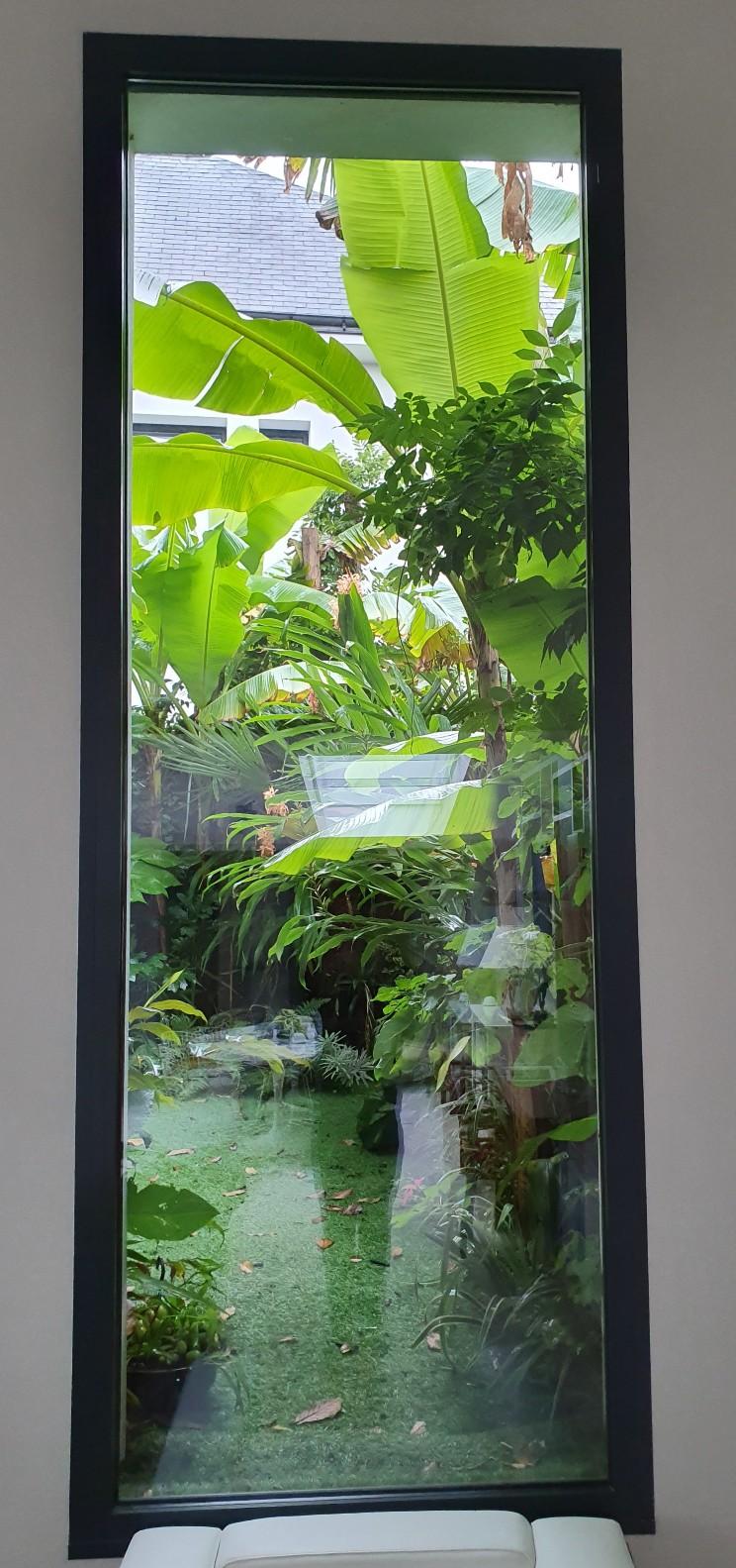 Fenêtre sur cour - En regardant par la fenêtre  20191347