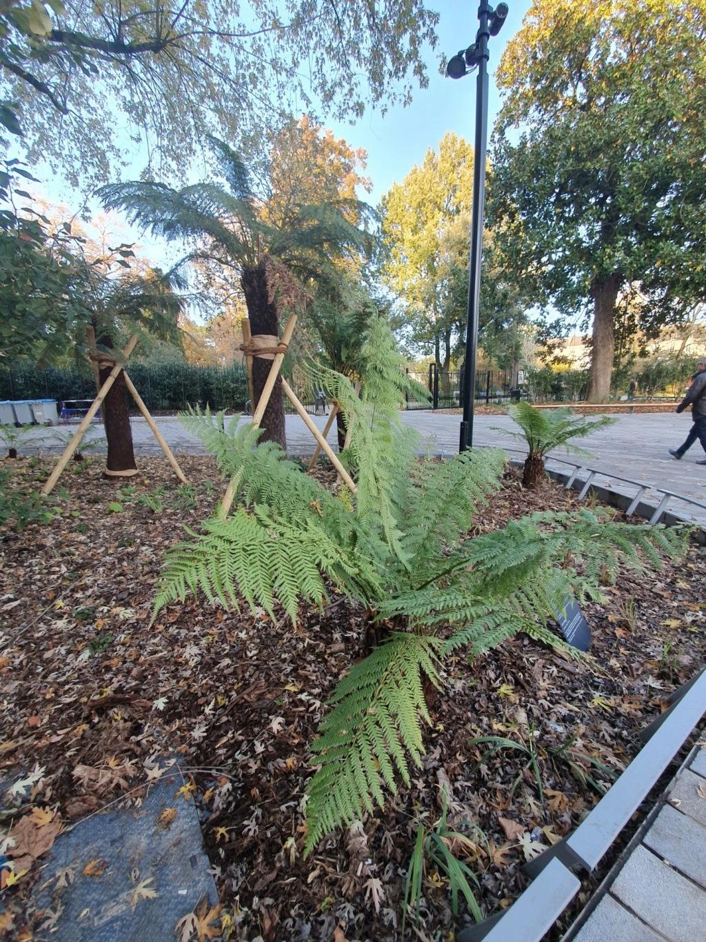 (44) Jardin des plantes - Nantes - Page 4 20191420