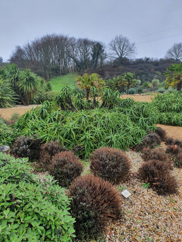 (44) Jardin Exotique de Pontpierre à Saint-Herblain 20200167