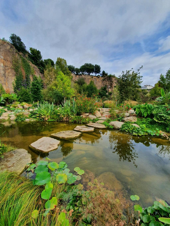 (44) Jardin Extraordinaire - Carrière Misery - Nantes - Page 3 20200265