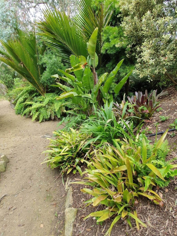 (29) Jardin exotique de Roscoff 20200658