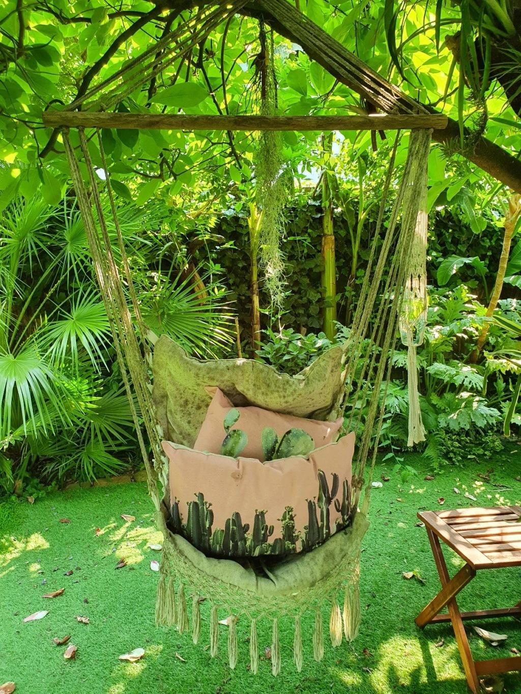 Rémi - Mon (tout) petit jardin en mode tropical - Page 18 20200674