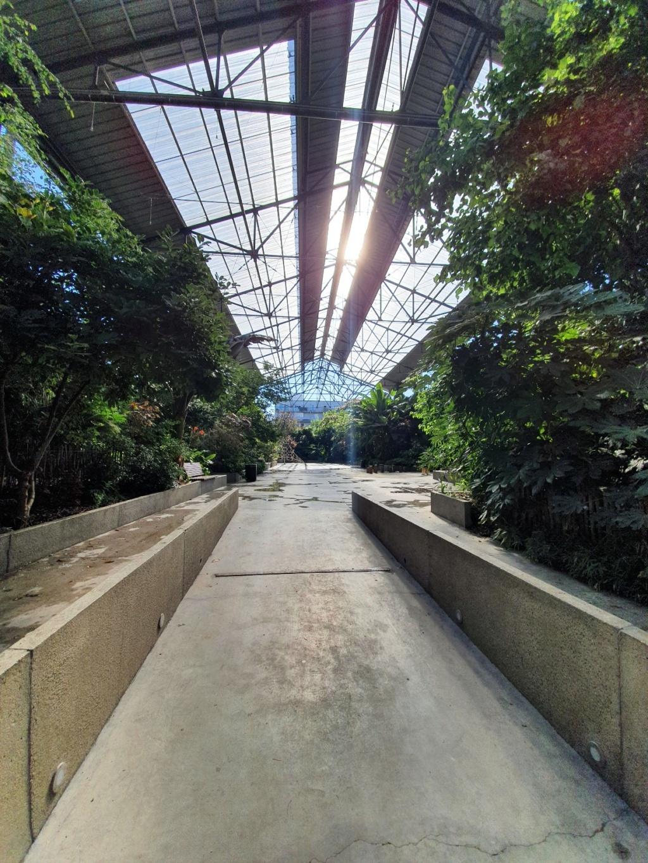 (44) Jardin de la Fonderie - Nantes - Page 2 20200743