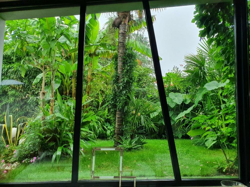 Fenêtre sur cour - En regardant par la fenêtre  20200867