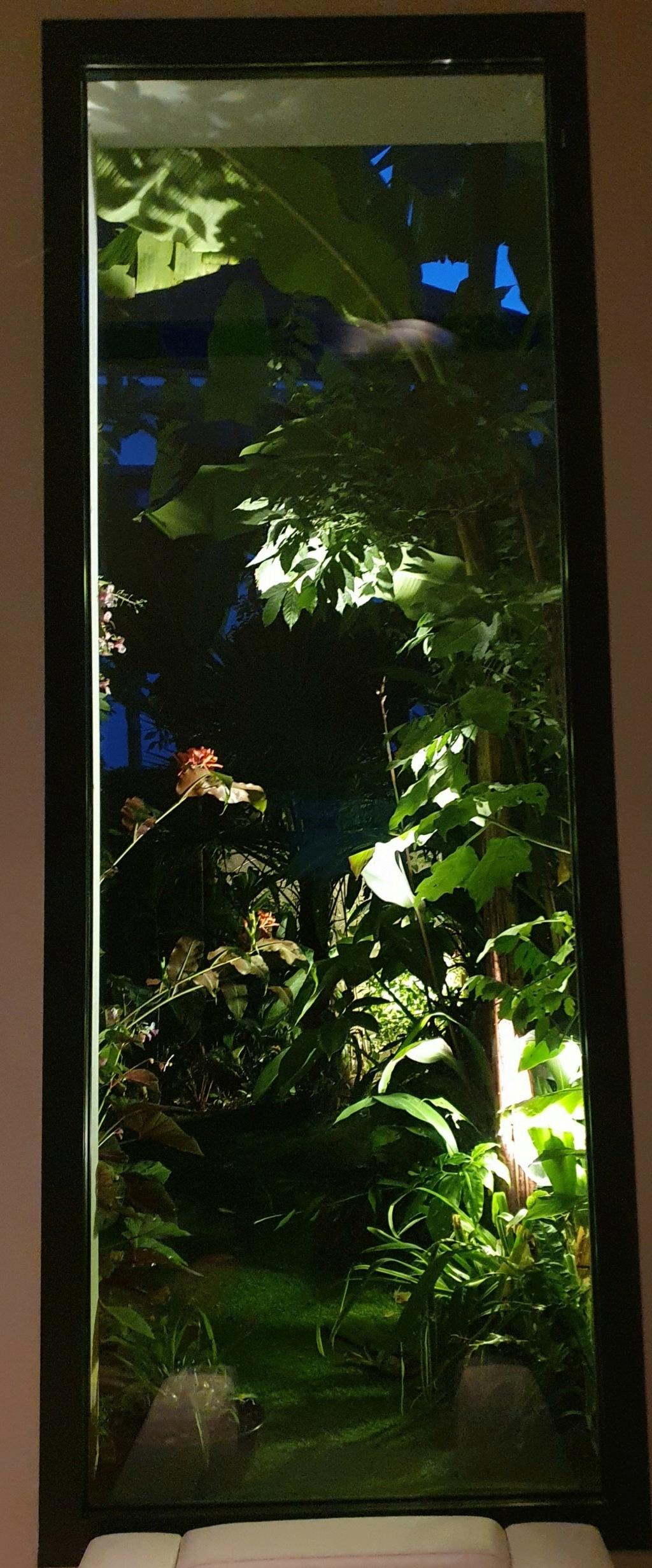 Fenêtre sur cour - En regardant par la fenêtre  20200874